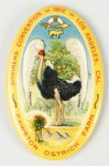 Cawston Ostrich Pocket Mirror | Los Angeles, California