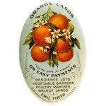 Orange Lands Pocket Mirror | Los Angeles, California