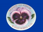 W. Atlee Burpee Pocket Mirror